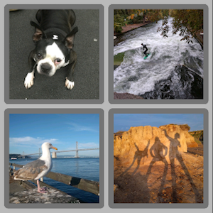 a screenshot showing 2 rows, each containing 2 images; the images have grey rounded borders, and the background is a lighter grey